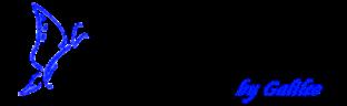 Web Design By Galileo logo image